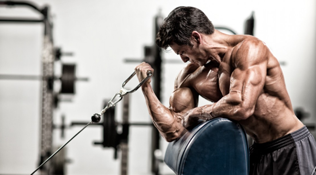 Basic and isolating biceps exercises for all bodybuilders