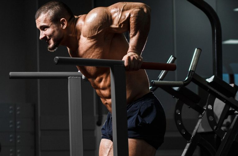 Perfect Dips: which muscles work + scheme
