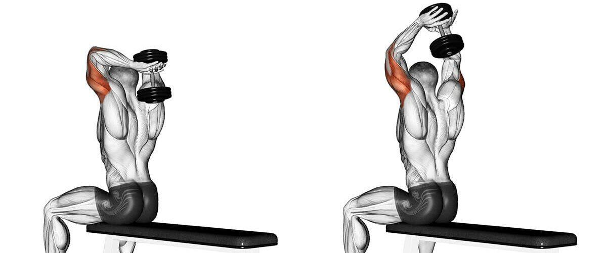 French bench press with 1 or 2 dumbbells sitting, another good option of the French bench press, you can use it for a change.