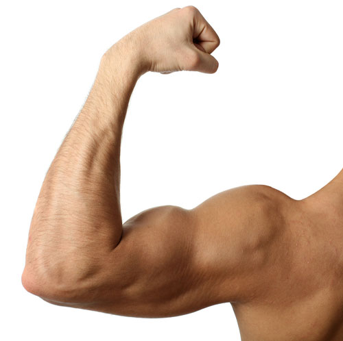 """Many people dream of having pumped biceps. Some athletes are more lucky, and their hands """"swell"""" after each workout, while others have to work pretty hard in the gym to get the minimum result."""