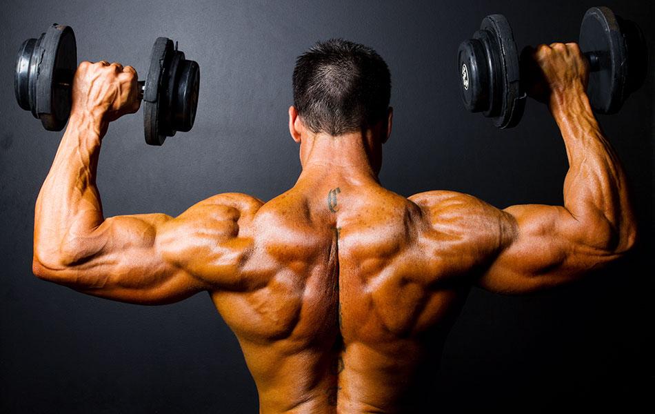 упражнения на плечи - базовые и изолирующие
